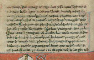 La scrittura beneventana nell'Archivio dell'Abbazia di Montecassino